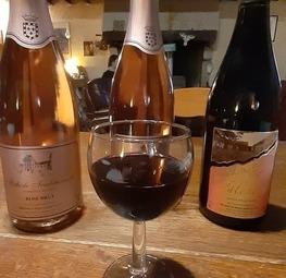Vin de Valençay Pétillant blanc ou Rosé (Serge et Marylene Leclair)